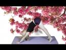 Утренняя зарядка_ йога для начинающих за 7 минут