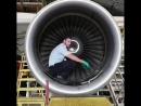 Установка лопаток авиационного двигателя