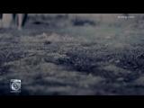 Shadmehr_Aghili_-_Entekhab_OFFICIAL_VIDEO_HD.mp4