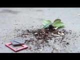 Айдамир Мугу - Капризная  Official Music Video HD.3gp