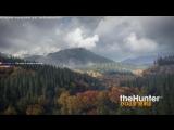 Прогулка по лесу или история о самой крутой игре! TheHunter: Call of the Wild