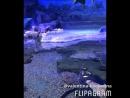 Крокус Сити Океанариум - крокодилы