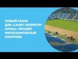 Новый газон для «Санкт-Петербург Арены» успешно прошёл фитосанитарный контроль