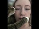 Истинная любовь кота к человеку