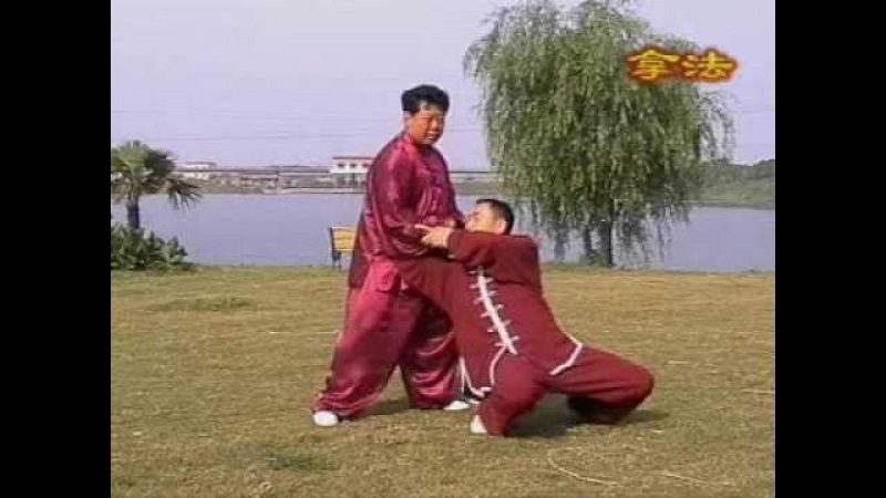Чень Юй обучает ТуйШоу Chen style Taiji, Chen Yu tuishou