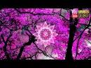 30 min 🎶 Settimo Chakra 🎶 Musica Rilassante per Meditazione 🎶 Musica Ambient per Lavorare e Studiare