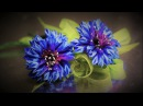 Цветок ВАСИЛЁК, мастер класс, КАНЗАШИ / DIY Ribbon Flower Kanzashi
