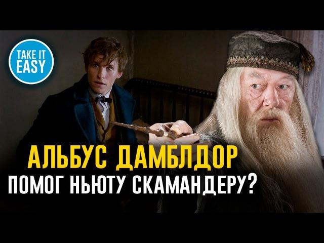 В чём Альбус Дамблдор помог Ньюту Скамандеру? 5 теорий по вселенной Гарри Поттера