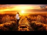 Bee Hunter Keith Harris - Sunshine State (Original Mix)