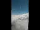 Взмывая над облаками