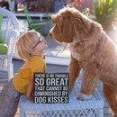 3-летний усыновлённый мальчик и пёс из приюта — лучшие друзья.