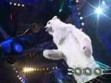 Евгений медведь Машечкин - О себе