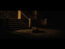 Coen Brothers - Stillness of Life __ Video Essay