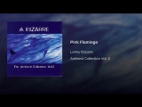 Lenny Ibizarre - Ambient Collection Vol. 2 - Pink Flamingo