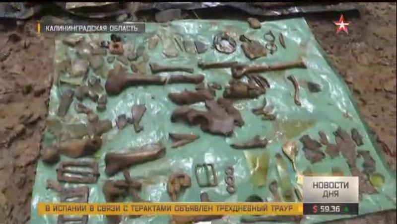 Под Калининградом обнаружили Ил-2 времен Великой Отечественной с останками пилотов