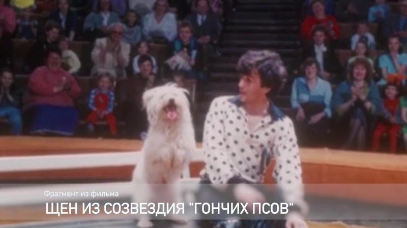 Фрагмент фильма Щен - из созвездия гончих псов