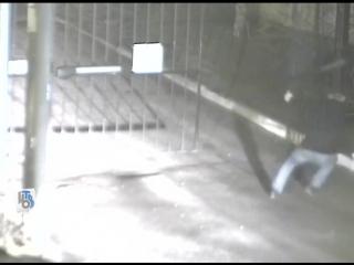 Вандализм дня — мужчина средних лет сломал ворота на въезде в один из курских дворов