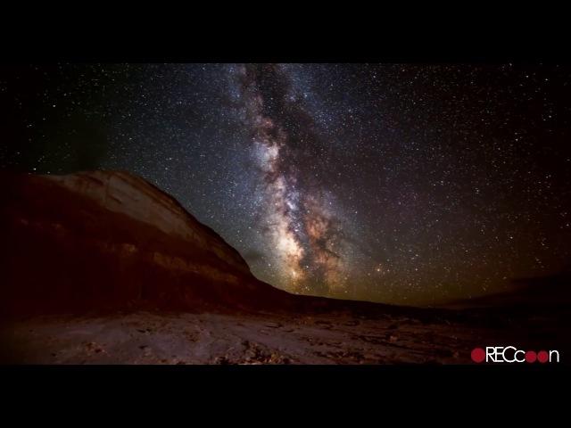 RECcoon - bottomless daydreams