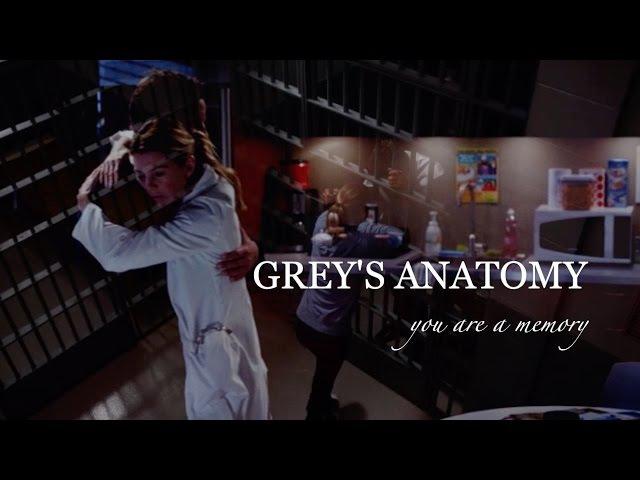 Grey's anatomy I You are a memory (season 1-13)