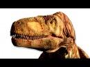 Интересные факты для детей про динозавров Дасплетозавр Семен Плей