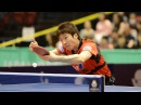 Fan Zhendong vs Jun Mizutani | MS | 1/2 | Japan Open 2017