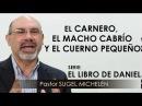 """EL CARNERO EL MACHO CABRÍO Y EL CUERNO PEQUEÑO"""" pastor Sugel Michelén Predicaciones"""