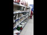 Вот такую красоту к зимним праздникам уже начали выкладывать в наших магазинах. Нидерланды.