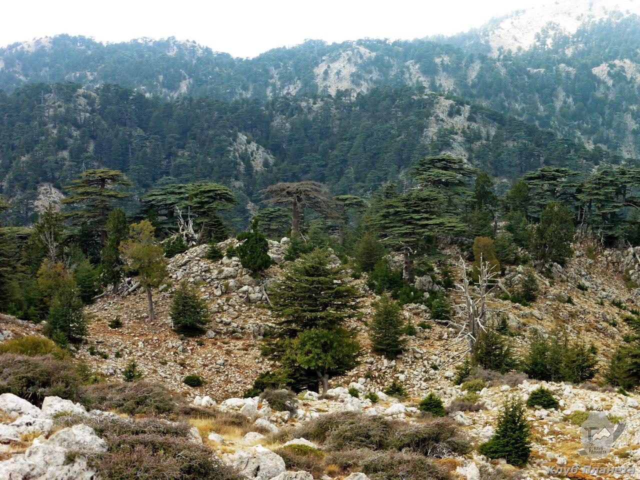 Ликийская тропа. Другая Турция. Отчет о путешествии.