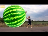 Bad Baby with Sticky Tape &amp GIANT WATERMELON ! w- Johny Johny Yes Papa Song for kids!.mp4