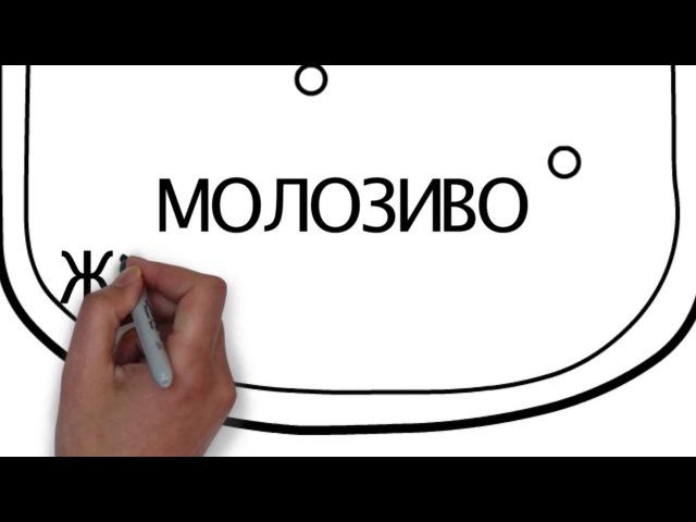 О ТРАНСФЕР ФАКТОРЕ