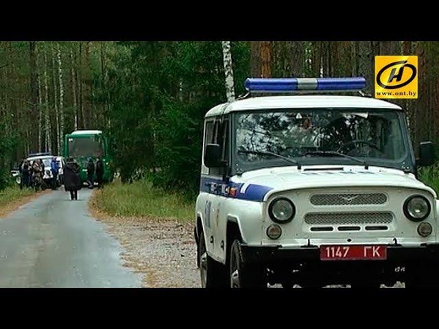 В Беловежской пуще продолжаются поиски десятилетнего мальчика, пропавшего в минувшую субботу