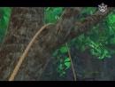 Робин Гуд Проказник Из Шервуда s1e39 - Волшебная Стрела!