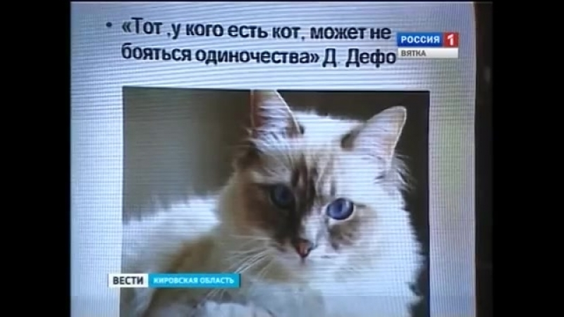 «О семействе кошачьих» на празднике в библиотеке имени Грин)