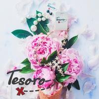 tesoro_x