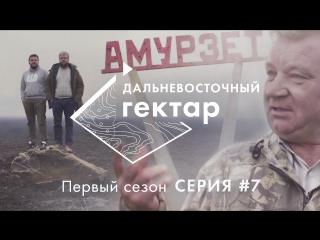Дальневосточный гектар. 7 серия. Амурзет