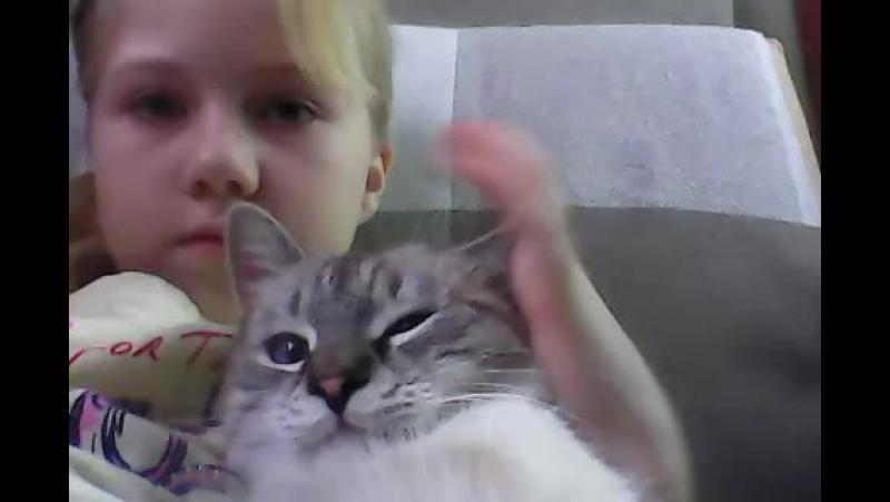 котя беня с вами