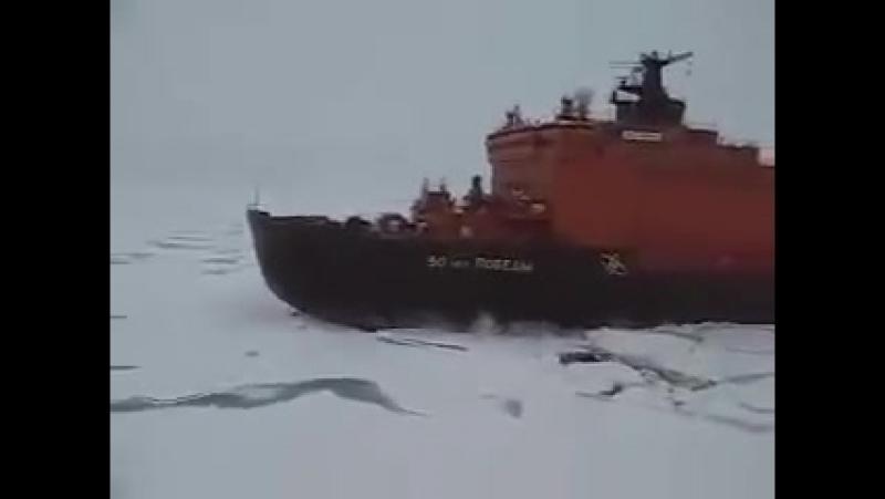 Нех шляться, там где Русские идут:-)