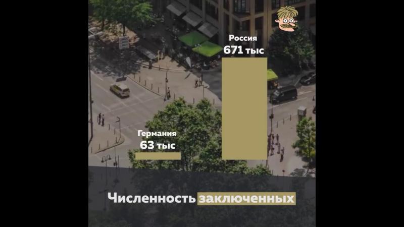 Коротко кто и как борется с преступностью)