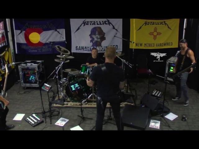 Metallica - The Dick Song