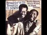 Muddy Waters, Johnny Winter &amp James Cotton - Dealin With The Devil