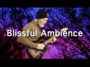Ambient Guitar Meditation 17 4 Strymon Timeline Riverside Neunaber Expanse Neunaber Immerse