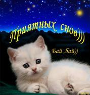 """Сон твой нежно охраняя, Ночь идёт к тебе большая. Звёзды ласково бормочут: """"Спи, котёнок,доброй ночи"""""""