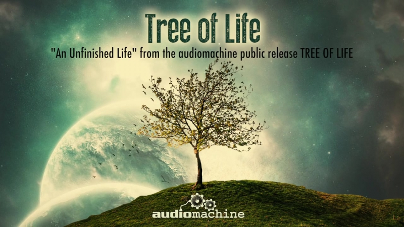 Audiomachine - An Unfinished Life