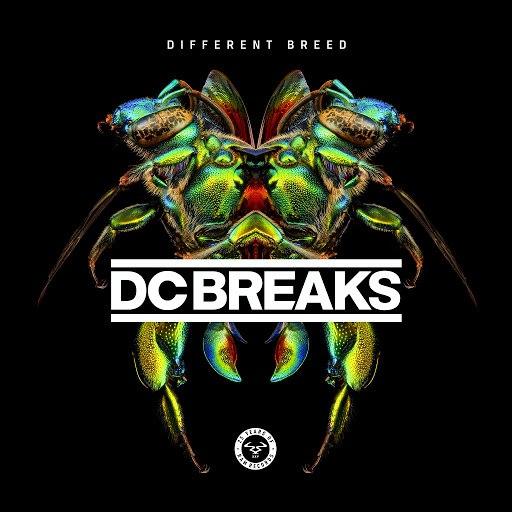 DC Breaks альбом Different Breed