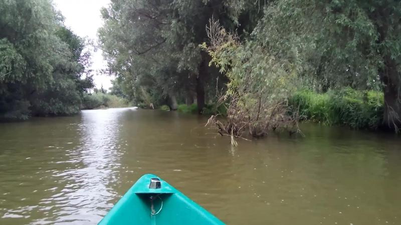 В дельте Волги