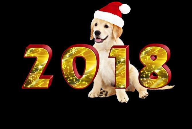 С новым годом)