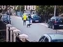 В  Черногории бездомный пес спас девушку от грабителя.