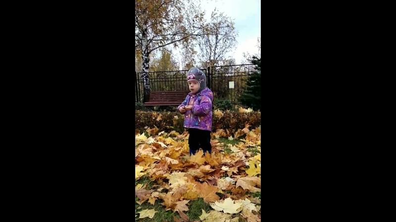18.10.17. Осень, Вовик, листочки...