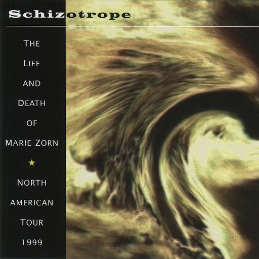 Richard Pinhas альбом Schizotrope: The Life and Death of Marie Zorn