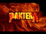 Pantera-cemetary gates